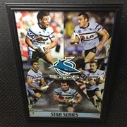 Sale 8805A - Lot 862 - Cronulla Sutherland Sharks Star Series, framed
