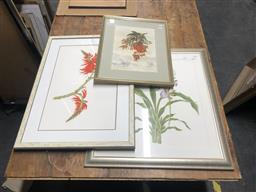 Sale 9152 - Lot 2073 - Group of (4) Assorted watercolours and pastels depicting Australian Natives by Various Artist incl: Pamela Brown, Hazel Chin, Jess E...