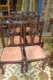 Sale 8115 - Lot 1211 - Set of 6 Heavily Carved Mahogany Dining Chairs on Ball & Claw Feet