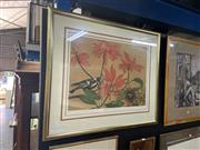 Sale 8932 - Lot 2001 - Pamela Griffith - Magpie in the Poinsettia, colour etching and aquatint, ed. 3/40, 73 x 86cm, signed -