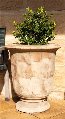 Sale 9191W - Lot 467 - A pair of terracotta  Anduze style pots with Buxus H. Pot 55cm H. with plant 95cm