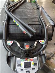 Sale 8362 - Lot 2120 - Woodway Oversize Treadmill (3 phase power)