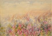 Sale 8665 - Lot 543 - Ellis Rowan (1848 - 1922) - Wildflowers 23.5 x 33.5cm