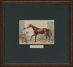 Sale 9130 - Lot 2077 - A 19th century handcoloured lithograph of Thormanby ( the winner of the Derby 1860), frame: 42 x 46 cm, -
