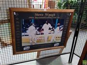 Sale 8619 - Lot 2092 - Steve Waugh 1995-6 International Cricketer of the year 58 x 77cm (frame size)