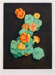 Sale 8467 - Lot 596 - Peter Hickey (1943 - ) - Nasturtiums, 1991 29 x 21.5cm