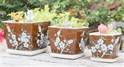 Sale 8422A - Lot 83 - Three decorative brown ceramic planters with saucers containing a variety of succulents, largest height 23 x width 19cm
