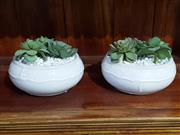 Sale 9009 - Lot 1012 - Two Faux succulents in white planters