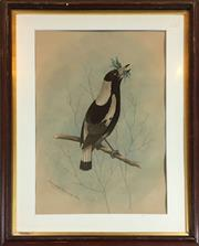Sale 8795K - Lot 17 - Archibald Thorburn, watercolour