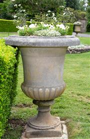 Sale 8677A - Lot 8 - Pair of stone urns with white flowering plants. Height 109cm