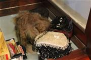 Sale 7953 - Lot 70 - Vintage Beaded Bags and Fur Hat