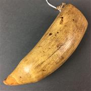 Sale 8638 - Lot 662 - Antique Tampa (Whale Tooth Pendant)