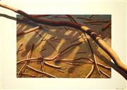 Sale 8519A - Lot 5017 - Hanna Kay (1947 - ) - Untitled (Twigs & Silhouettes) 91.5 x 122cm