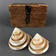 Sale 8638 - Lot 635 - Pair of Pearled Shells, in box