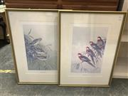 Sale 9072 - Lot 2051 - A set of 4 Neville Cayley limited edition prints, embossed, 71 x 52cm (frame) -