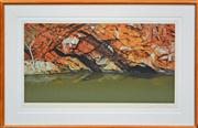 Sale 8068A - Lot 38 - David Rose (1936 - 2006) - rock pool, Ormiston Ranges 46.5 x 79.5cm