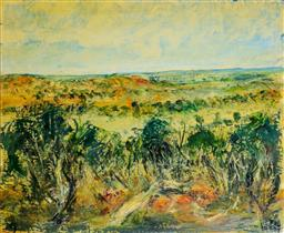 Sale 9191A - Lot 5006 - KEVIN CHARLES (PRO) HART (1928 - 2006) White Cliffs, Northern South Australia, 1979 oil on canvas board 50 x 60 cm (frame: 88 x 96 x...