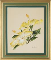 Sale 8794 - Lot 2059 - Peg Campbell - Yellow Hibiscus Flower watercolour, 38 x 31cm, signed lower left -