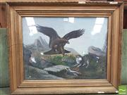 Sale 8428 - Lot 1012 - 19th / 20th Century School Eagle Striking Trapped Cat pastel, 42 x 56 cm