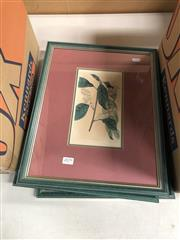 Sale 8845 - Lot 2079 - Group of (4) Early Botanical Hand-Coloured Plates