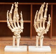 Sale 8890T - Lot 72 - A pair of scale skeletal hand models on stands, height 25cm