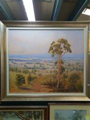 Sale 8645 - Lot 2029 - Marcia Rea - Bungendore oil on canvas on board, 100 x 114cm, signed lower left