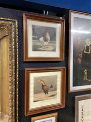 Sale 8910 - Lot 2003 - Pair of handcoloured engravings, Prized Fighting Roosters, 37.5 x 37.5 cm