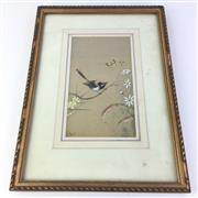 Sale 8793 - Lot 89 - J. Bond, Original Watercolour showing an Austral Finch and Flannel Flowers, image 22 x 12cm, framed