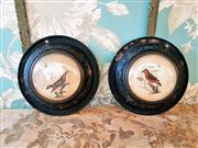 Sale 8500A - Lot 93 - A pair of French metal toleware bird wall plaques - Condition: Good - Measurements: 15cm diameter