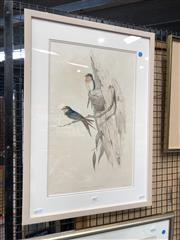 Sale 8856 - Lot 2057 - John Gould & H.C. Richter Welcome Swallow hand-coloured lithograph, 63.5 x 45.5cm (frame)