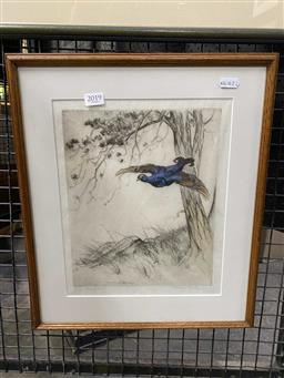 Sale 9176 - Lot 2019 - G Vernon Stokes, bird in flight, etching, ed 20/75, frame: 42 x 35 cm, signed lower right -