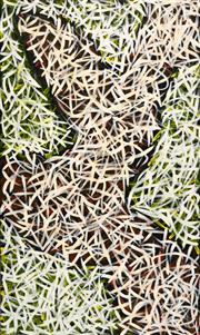 Sale 8535 - Lot 511 - Abie Loy Kemarre (1972 - ) - Bush Medicine Leaves 150 x 92cm (stretched & ready to hang)