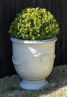 Sale 9248H - Lot 17 - A cream colored Anduze style pot, planted with a topiary sphere Height 58 x diameter 54cm Total height 98cm