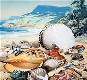 Sale 8943A - Lot 5002 - Ralph Malcolm Warner (1902 - 1966) - The Shells of New South Wales, c1959 gouache