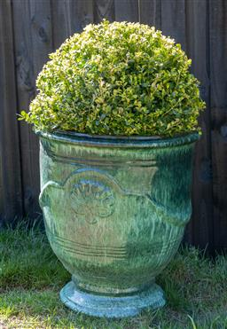 Sale 9248H - Lot 20 - A green glazed Anduze style pot,planted with a topiary sphere height 58 x diameter 54cm Total height 98cm