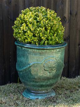 Sale 9248H - Lot 23 - Agreen glazed Anduze style pot,planted with a topiary sphere  height 58 x diameter 54cm Total height 98cm