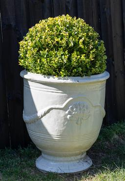 Sale 9248H - Lot 25 - A cream colored Anduze style pot, planted with a topiary sphere  height 58 x diameter 54cm Total height 98cm