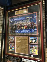Sale 8805A - Lot 804 - Western Sydney Wanderers 2014 AFC Champions, framed