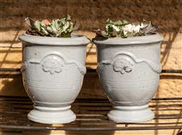 Sale 9191W - Lot 499 - A pair of grey glazed  Anduze style pots planted with Kale. H.25cm
