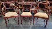 Sale 8993 - Lot 1100 - Set of Eight William IV Mahogany Dining Chairs, including two scrolled armchairs, with kidney shaped backs, gold fabric drop-in seat...