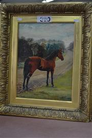 Sale 8093 - Lot 1732 - Antique Oil Painting of a Horse in Good Gilt Frame, signed A.G. May 1896