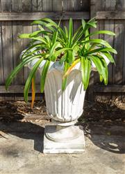 Sale 8745A - Lot 24 - A Large Heavy Tulip Shaped Composition Stone Garden Urn Planted With Agapanthus, 80 cm Tall