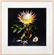 Sale 8316 - Lot 536 - Rex Dupain (1954 - ) - Still Life - Protea & Sea Shells, 2003 58 x 58cm
