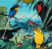 Sale 8943A - Lot 5019 - Ralph Malcolm Warner (1902 - 1966) - Birds of Queensland, c1959 gouache