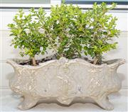 Sale 8595A - Lot 80 - A small French style painted terracotta jardinière, L 46cm, planted with buxus