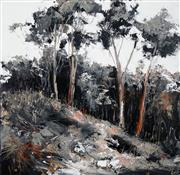 Sale 8565 - Lot 517 - Cheryl Cusick - Bush Shadows 100 x 100cm
