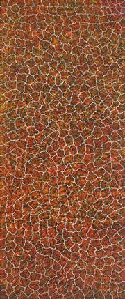 Sale 9081A - Lot 5023 - Gracie Morton Pwerle (c1956 - ) - Bush Seeds 190 x 79 cm (stretched and ready to hang)
