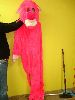 Sale 7490 - Lot 47 - 1 PINK PANTHER COSTUME WITH SOFT HEAD