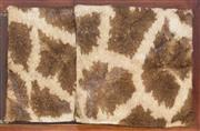 Sale 8261A - Lot 44 - Two giraffe hide cushions, 45 x 45cm
