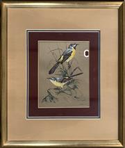 Sale 8686 - Lot 2029 - Jarvis - Two Birds, 1976, gouache, 59 x 50cm (frame size), signed and dated lower right